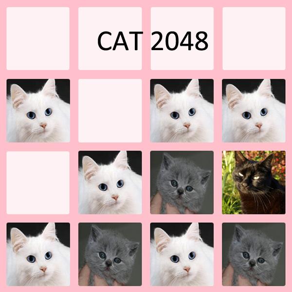 cat2048